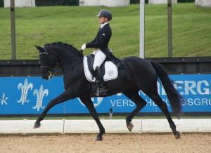 Umani Pferd International 2015
